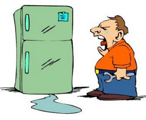 Are Appliance Extended Warranty Worth It Guaranteed Parts